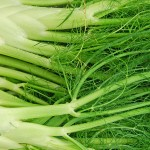 Le fenouil fait partie des remèdes maison pour le reflux gastrique